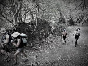 Mettre la Joie au Travail, Itinérance active @ Chemins de grande randonnée, Pays de Loire | Angers | Pays de la Loire | France