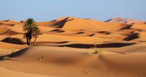 Itinérance désert Maroc